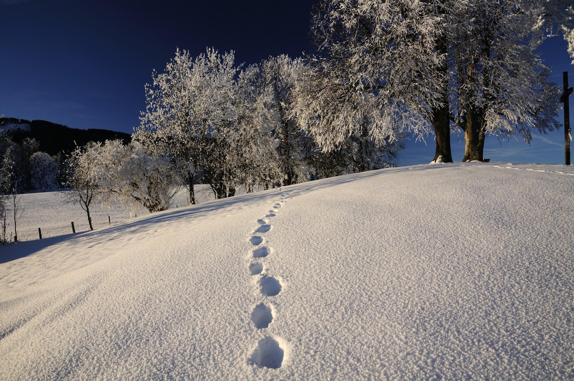 Wintererlebnisse Bad Tölz